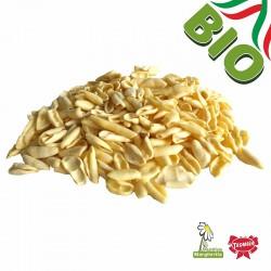Feuilles d'olivier BIO