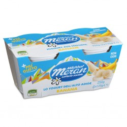 YOGURT MERANO 2X125GR BANANA