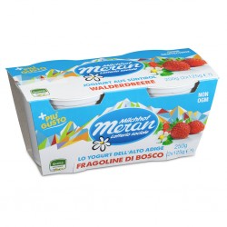 YOGURT MERANO 2X125GR FRAGOLA
