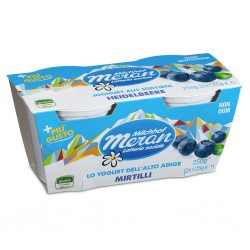 YOGURT MERANO 2X125GR MIRTILLO