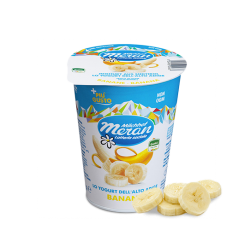 YOGURT MERANO 400GR BANANA